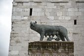 foto of wolverine  - Underneath the stone brick church tower, a landmark with bronze statue of ancient Roman bronze of the she-wolf suckling Romulus and Remus, founders of Rome. 