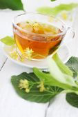picture of lime-blossom  - cup of lime tea with lime blossoms - JPG