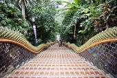 foto of bannister  - Front view of the 306 steps leading up to the temple complex Chiang Mai Thailand - JPG