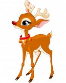 foto of rudolph  - Illustration of cute Christmas reindeer Rudolf - JPG