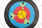 pic of archery  - The bull - JPG