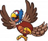 foto of pheasant  - Cartoon pheasant bird - JPG