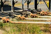picture of petroleum  - Transfer valving for fuel tanks at a small petroleum tank farm - JPG