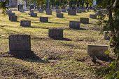 picture of empty tomb  - Graveyard scene honoring war veterans - JPG