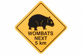 pic of wombat  - Australian road sign warning of stray wombats - JPG