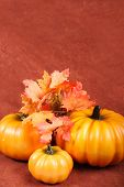 foto of grateful dead  - fall and thanksgiving items - JPG