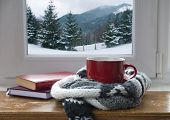Winter Background - Cup With Candy Cane, Woolen Scarf And Gloves On Windowsill And Winter Scene Outd poster