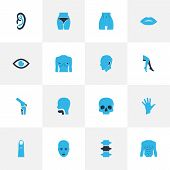 Physique Icons Colored Set With Chest, Spine, Oral Cavity And Other Buttocks Elements. Isolated Vect poster