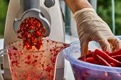 Red Hot Chili Pepper. Making Red Hot Chili Pepper Mash In A Grinder poster