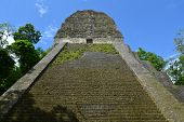 Mayan Temple Nr Five In Tikal, Guatemala