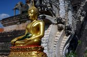 pic of budha  - Gold Budha in Thailand with back of naga - JPG