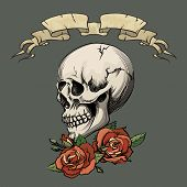picture of deceased  - Human skull with roses on dark gray background - JPG