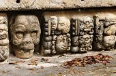 picture of mayan  - Honduras Mayan city ruins in Copan - JPG