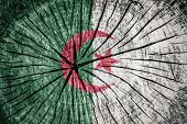 image of algiers  - flag of Algeria on cracked wooden texture - JPG