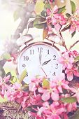 Постер, плакат: Spring Daylight Savings Time
