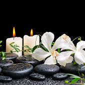stock photo of tendril  - beautiful spa concept of blooming white hibiscus twig with tendril passionflower and candles on zen basalt stones with drops