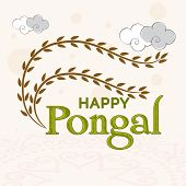image of pongal  - South Indian harvesting festival - JPG