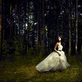 picture of fairy  - Portrait of romantic woman in fairy forest - JPG