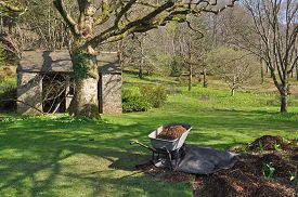 stock photo of outhouse  - Garden outhouse and barrow - JPG
