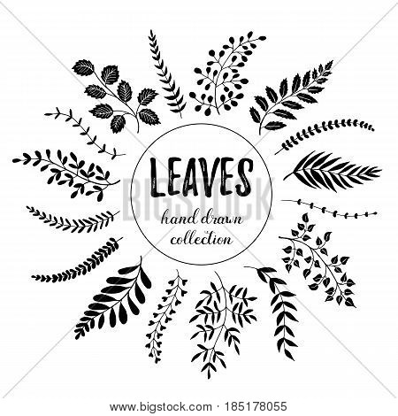 poster of Hand drawn branches collection. Set of sketch style leaves isolated on white background. Vintage ink floral elements. Decorative plants for greeting card and invitation design.