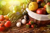 Fruits And Vegetables On Table And Crop Landscape Background Elevated poster