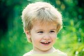 Adorable Young Happy Boy. Child Portrait, Happy Face On Green Nature Background. Beautiful Baby Face poster
