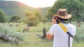 Young Asian Man Traveler And Photographer Taking Photo Of Wildlife Animal In African Safari. Wildlif poster
