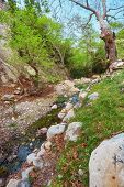 Amazing Natural Landscape In The Avakas Canyon In Cyprus. National Sunny Wild Park With Cliffs, Moun poster