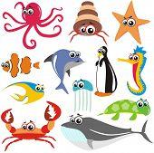 Постер, плакат: ВЕКТОР животных рыб набор: краб осьминог рыба акула черепаха Медузы китов морской конек звезда