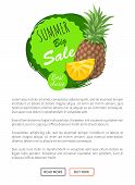 Summer Big Sale Summertime Banner Vector. Pineapple Fruit And Slices Of Tasty Tropical Plant. Vector poster