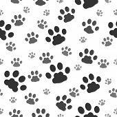 Paw Prints Pattern. Paws Print Of Dog Seamless Background, Cat Animal Printting Signs Dirty On White poster