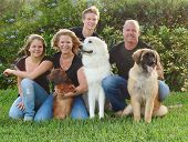 picture of family fun  - happy and attractive family with their dogs on front lawn at home - JPG