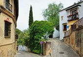 Steep Street In The Ancient Ronda