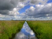 Reflecting Polder Ditch