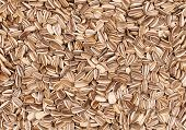 pic of libido  - close up of sunflower seeds -photo in Studio