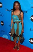 PASADENA, CA - JULY 19: Dana Davis at the Disney ABC Television Group All Star Party on July 19, 200