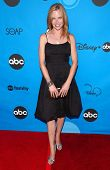 PASADENA, CA - JULY 19: Sarah Jane Morris at the Disney ABC Television Group All Star Party on July