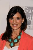 Perrey Reeves at the L.A. Gay And Lesbian Center Hosts 'An Evening' honoring Amy Pascal and Ralph Ri