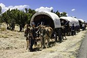 Teenagers traveling on covered wagons
