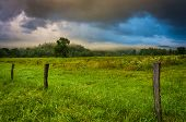 foto of cade  - Fence and fog in a field at sunrise at Cade - JPG
