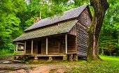 image of cade  - The Henry Whitehead Cabin at Cade - JPG