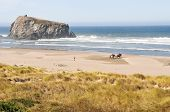 pic of cannon  - Two horses being photographed on Cannon Beach in Oregon - JPG