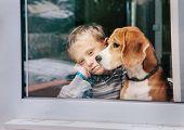 picture of sorrow  - Sorrow little boy with best friend looking through window - JPG