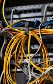 foto of wiretap  - Insulated cords of network link in closeup - JPG