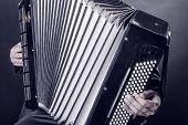 stock photo of accordion  - Close - JPG