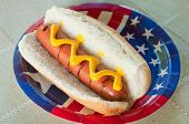 stock photo of hot dogs  - A grilled hot dog with mustard on a patriotic paper plate - JPG