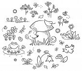 picture of insect  - Hand drawn flowers insects and animals for kids designs black and white outline - JPG