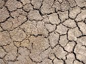 Picture of close-up cracked dried earth background.