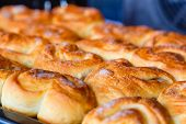 image of oven  - Fresh homemade buns close up in the oven - JPG
