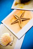 stock photo of starfish  - Instant Frames of Starfish and Seashells on Blue Wooden Background - JPG